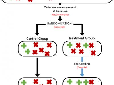 Diagram for trials